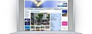 Duidelijke presentatie woonkernen Schouwen-Duiveland via onswooneiland.nl.